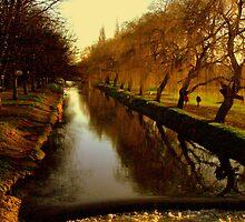 river shots 11 by Emma Close