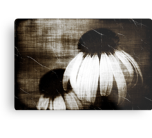 Echinacea Dark Dreams Metal Print