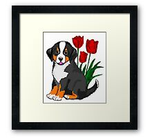 Bernese Mountain dog puppy with tulips Framed Print
