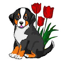 Bernese Mountain dog puppy with tulips Photographic Print