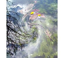 March winds Photographic Print