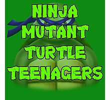 Ninja Mutant Turtle Teenagers Donatello Photographic Print