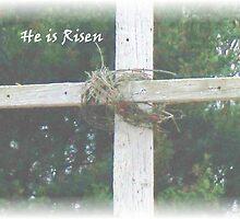 He is Risen by Judi Taylor