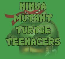 Ninja Mutant Turtle Teenagers Raphael by David Bodo