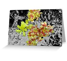 Spent Tulips Greeting Card