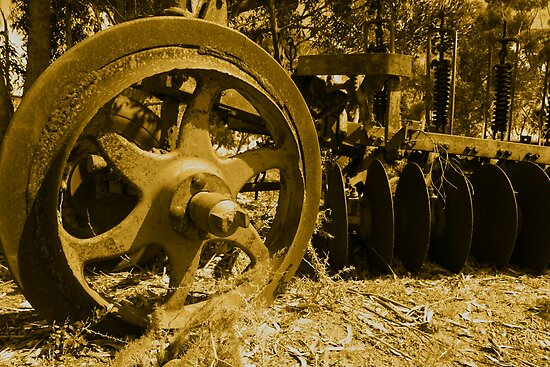 The Old Plough. by Chris Coetzee
