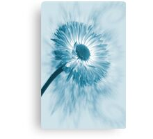 Blue Belle Canvas Print