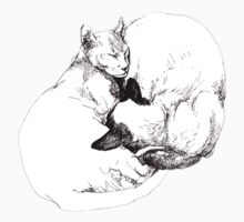 Chinky and Chang, ink drawing by Roz McQuillan