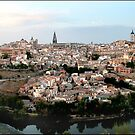 The Spanish City of Toledo by Philip  Rogan