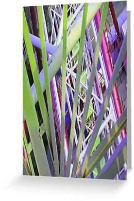 Ferris Wheel by Rosina  Lamberti