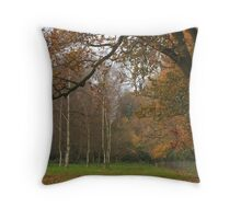 Natural fall framing Throw Pillow