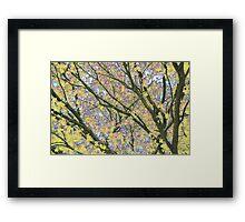 Psychedelic Nature Framed Print