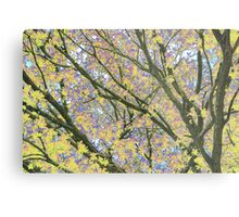 Psychedelic Nature Metal Print