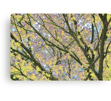 Psychedelic Nature Canvas Print