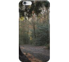 Sun break through coniferous wood iPhone Case/Skin