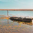 Lone boat on the Fleet Dorset UK by Pauline Tims