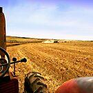 The Harvest by Chris Coetzee