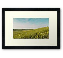Dorset Landscape near Abbotsbury UK Framed Print