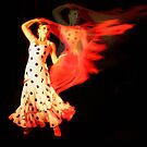Flamenco Fire by Naomi Mawson