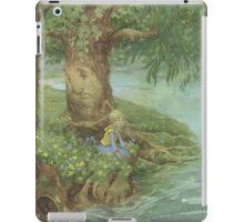Beside the Creek iPad Case/Skin