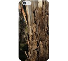 View Of Cromer Conservation Park iPhone Case/Skin