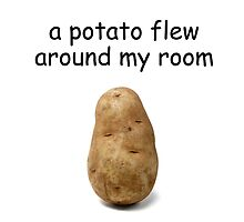 A Potato Flew Around My Room by quiethere