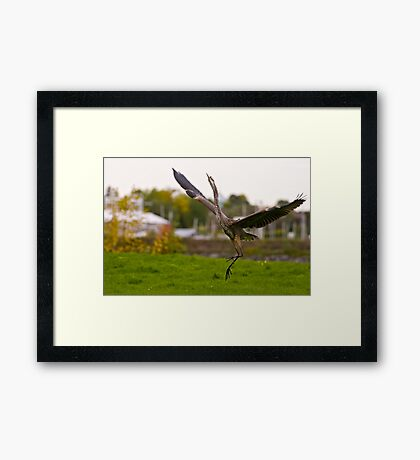 Dance try outs - Ottawa, Ontario Framed Print