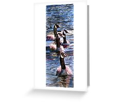 Gaggle of Geese Greeting Card