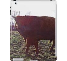 A big boy iPad Case/Skin