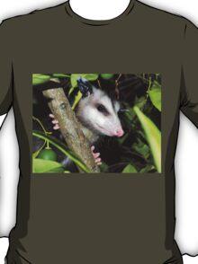 Cute baby possom T-Shirt