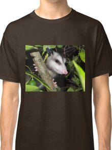 Cute baby possom Classic T-Shirt