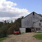 A day on the farm by vigor