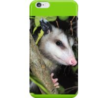 Cute baby possom iPhone Case/Skin