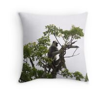 What can you see from the tree? Throw Pillow
