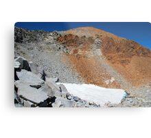 Yosemite's fading glaciers Metal Print