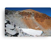 Yosemite's fading glaciers Canvas Print