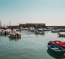 Lyme Regis Harbour by Pauline Tims
