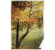 A Tranquil  Autumn Day Poster