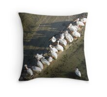 White Pelicans in the Indian River Lagoon Throw Pillow