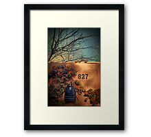 827 Framed Print