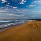 Durras Beach by Sarah Moore