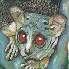 Bush baby by Cantus