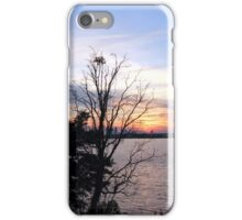 The Mighty St. Johns River iPhone Case/Skin