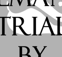Trial by Kombat Sticker