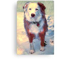 Cold Nubbie! Canvas Print