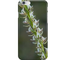 Chorus Line iPhone Case/Skin