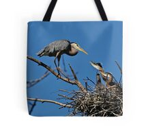 Great Blue Heron with Babies - Ottawa, Ontario Tote Bag