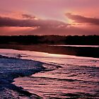 Magenta Twilight by wallarooimages