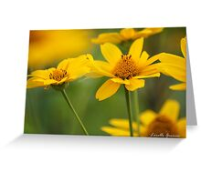Color Of The Sun Greeting Card