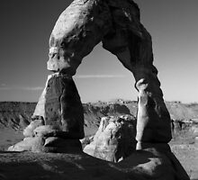 Delicate Arch  Arches NP  Moab  UT by halnormank
